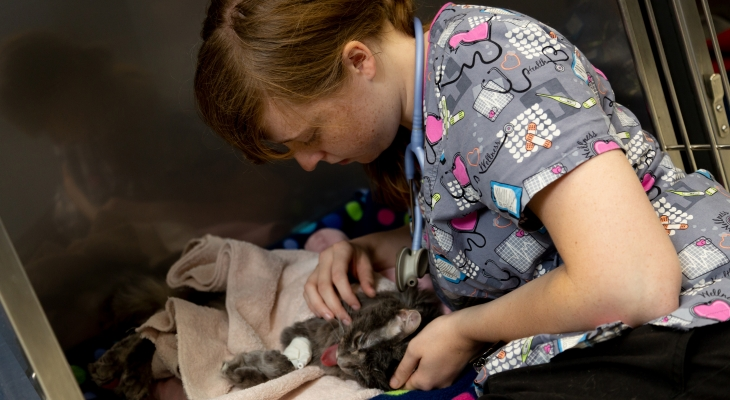 student taking care of cat